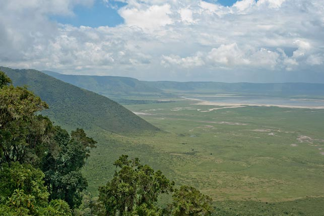 spot the ngorongoro crater with allen tanzania safaris