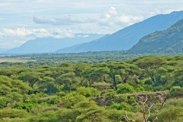 rift valley lake manyara