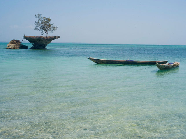 find hidden bays by boat arround pemba island with allan tanzania safaris