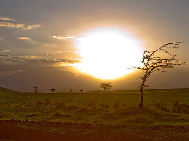 spot wired sunsets at enduiment with allan tanzania safaris