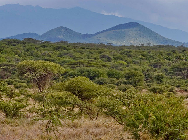 spot volcanic craters at enduiment with allan tanzania safaris